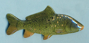 Beautiful Green Carp Hand-painted Pin
