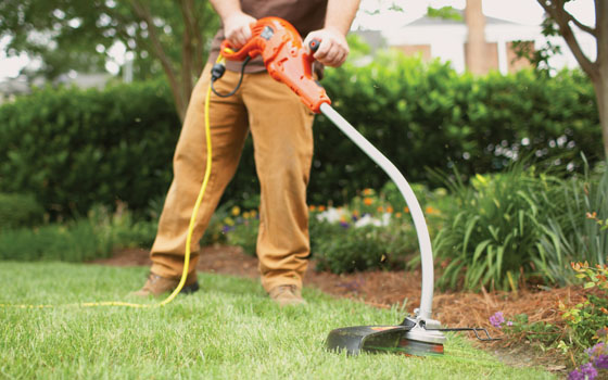 Electric Weed Eater - Ultimate Solution To Your Problem Related To Your Garden