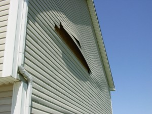 High winds blew out this section of siding, the entire side is now loose and flapping in the wind.