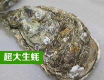 超大阳江生蚝