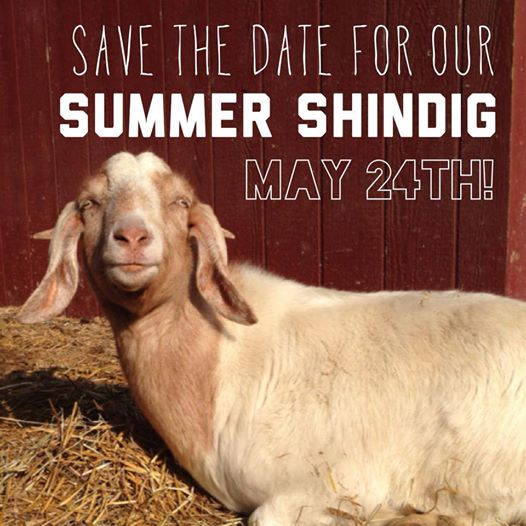 save-the-date-summer-shindig-may2014