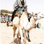 scan0002 150x150 De la turisti adunate: In Sahara trebuie sa ajungi cel putin o data in viata