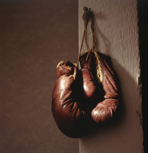 Cool Boxing Gloves
