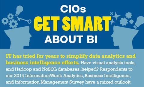 2014 Analytics, BI, and Information Management Survey