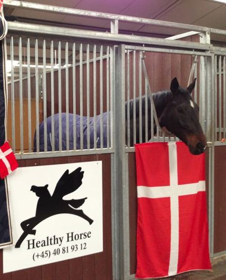 Sandie Bregnager Kjær and Healthy Horse