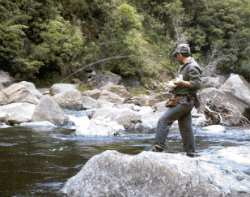 Hooked up with wild Ruakituri trout2(copy)