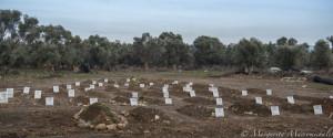 Lesbos Cemetery