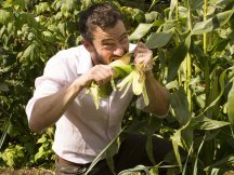Giles Coren Moves To The Country: Part II
