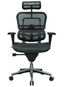 Ergohuman Mesh Ergonomic Chair with Headrest Mesh/Chrome Frame