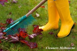 Garden Cleaners in Melbourne