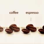 coffee bean types