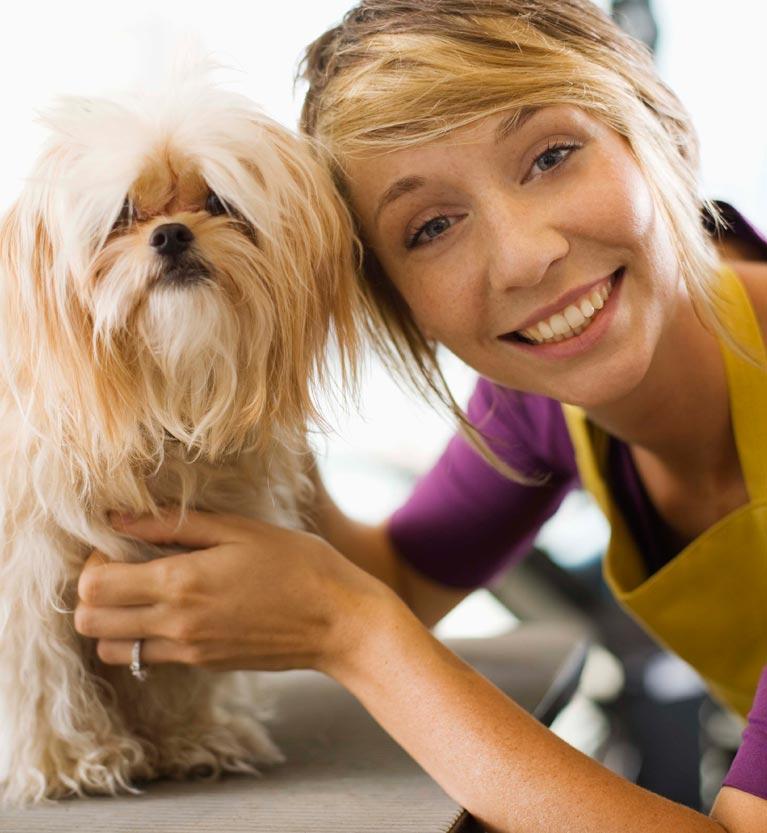 Dog groomer with small dog