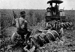 Agriculture (Plowing) CNE-v1-p58-H.jpg
