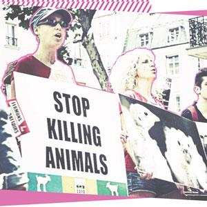 L'action politique en faveur des animaux