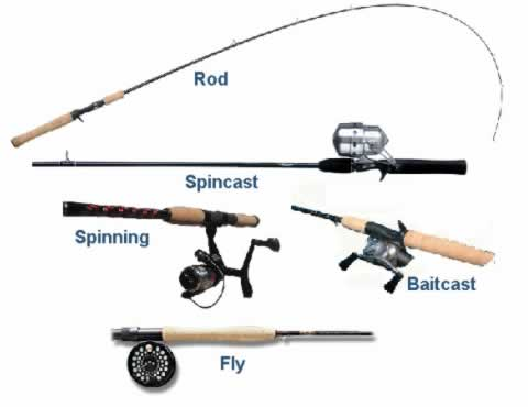 how-to-pick-fishing-rod