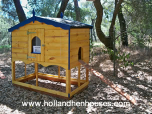Van Gogh Chicken house