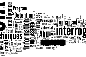 <i>Spotlight on 16.2 – Happy Birthday, UN</i>: The Torture Report and the Accountability Gap