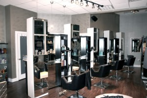 Swank Salon - Organic Color Bar - Boutique 6