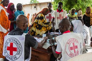 Red Cross staff check identification cards in Maiduguri