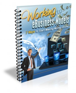 Working eBusiness Models eBook Review