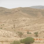 DSCN4292 150x150 De la turisti adunate: In Sahara trebuie sa ajungi cel putin o data in viata