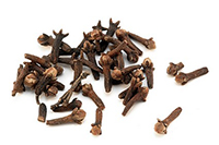 Dried clove - isolated on white