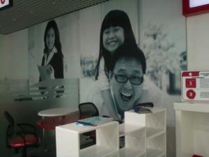 sản phẩm in pp lên tường