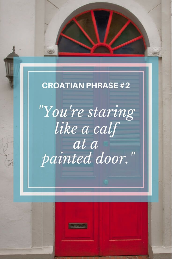Funny Croatian Sayings | Total Croatia