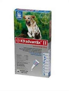 K-9 Advantix for flea control