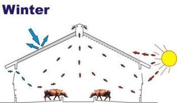 牛舍建设与构造图