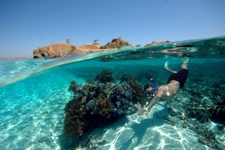 Tabarca-Snorkelling.jpg