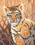 Dimensions-Needlecrafts-Paintworks-Paint-By-Number-Tiger-Cub-0