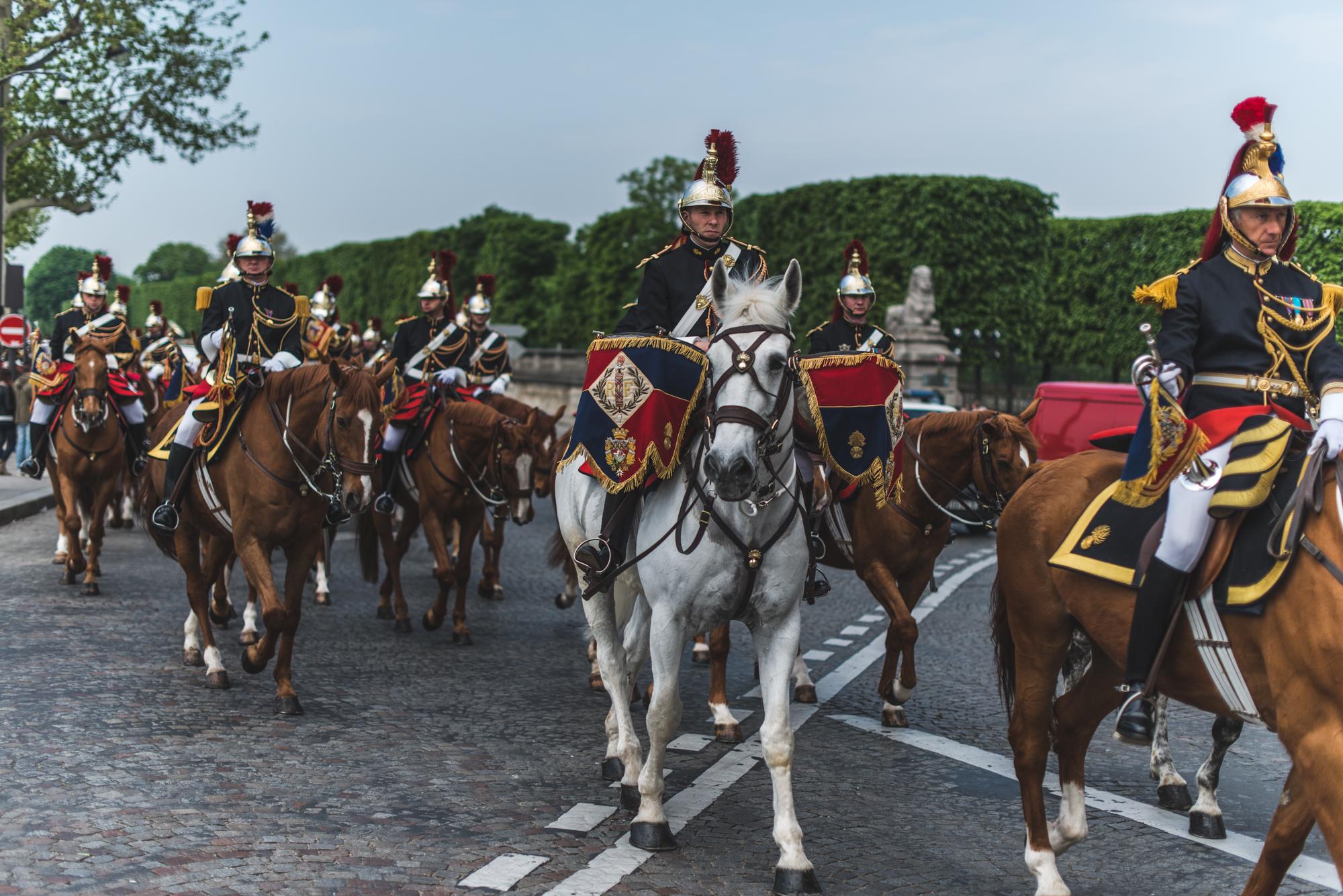 paris-horses