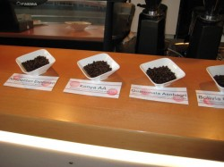 Coffee Bar's bean offerings of the day