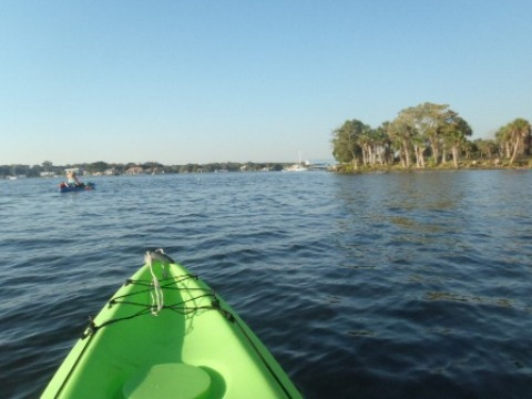 Paddle Crystal River - Kings Bay - Canoe, Kayak