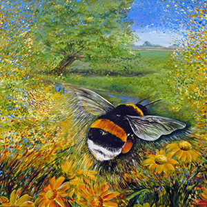 Bombus in the meadow lowres