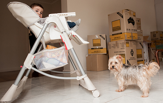 baby and dog moving