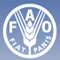 FAO - United Nations