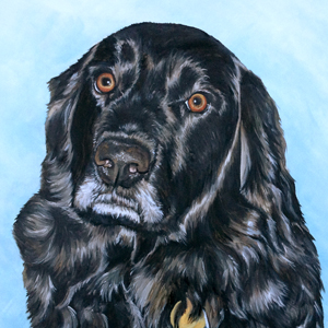 black lab oil painting by heather hughes