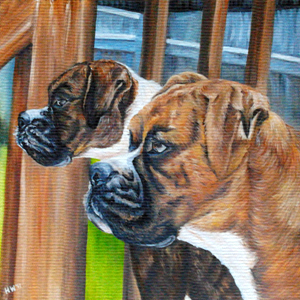 Emmie and Gracie boxers oil painting