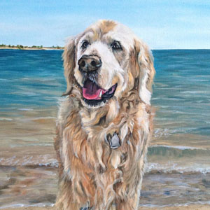 golden retriever oil painting by Heather Hughes