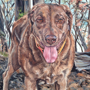Bailey chocolate lab oil painting