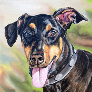 doberman oil painting by Heather Hughes