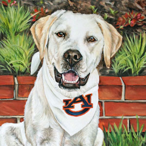 yellow lab oil painting by Heather Hughes