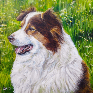 border collie oil painting