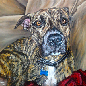 pit bull boxer oil painting