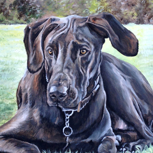 doberman great dane oil painting by Heather Hughes