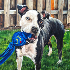 Mia pit bull oil painting
