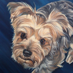 yorkshire terrier oil painting