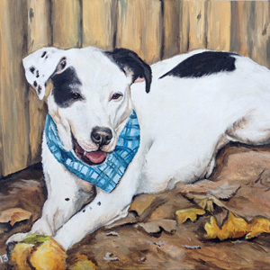Gus pit bull oil painting